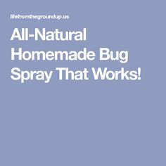 All-Natural Homemade Bug Spray That Works!