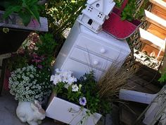Garden in small chest of drawers