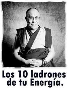 Albert Schweitzer, Dalai Lama, Osho, Life Motivation, Tai Chi, Reiki, Karma, Life Is Good, Coaching