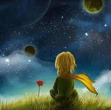 Goodbye scene by - Petit prince - Flower Little Prince Quotes, The Little Prince, Moon Art, Disney Wallpaper, Whimsical Art, Cute Wallpapers, Wallpaper Wallpapers, Cute Art, Fantasy Art