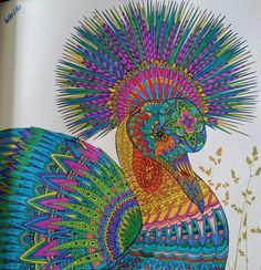 Peacock peahen the aviary colouring book