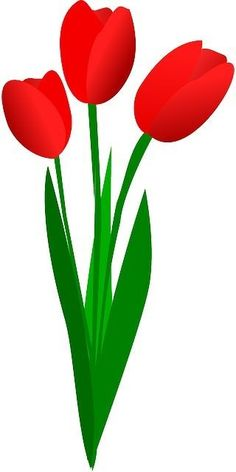 Red Tulips, Tulips Flowers, Art Drawings For Kids, Easy Drawings, Editable Birthday Cards, Flower Art Images, Flower Art Drawing, Photo Frame Design, Flower Phone Wallpaper