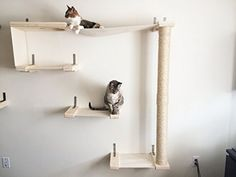 CatastrophiCreations Sky Track - Cat Hammock & Climbing Activity Center - Handcrafted Wall-mounted Cat Tree Shelves ** Read more  at the sponsored product link.