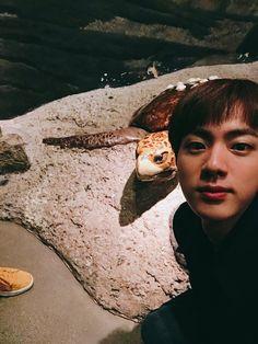 Jin ❤ [BTS Tweet] Thank you (Seokjin and a turtle CUTE) #BTS #방탄소년단