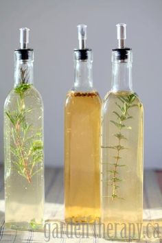 Recipes for parsley, rosemary, and sage; citrus and fennel; and tarragon and garlic herb infused vinegar.