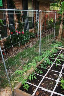 The Vertical Supports. This works well for tomatos, squash, cucumbers, small melons