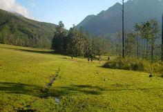 Valle del Tetero, Pico Duarte, Cordillera Central, R.D.
