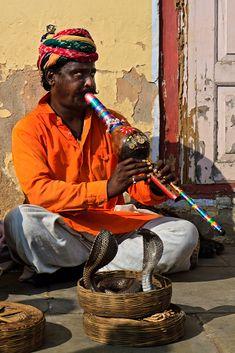 Snake Charmer in Jaipur, India