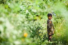 Photo by @stephenwilkes: A young girl wandering through foliage in Northern India; marker in hand ready to create or explore in wide-eyed wonderment.  I traveled to India just last month to create two new pieces for my series Day to Night. Follow me @stephenwilkes to learn where I traveled and which iconic locations will be featured in the next photographs  in the series!  #India #explore #DayToNight #StephenWilkes by natgeo