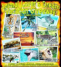 Yay... I won the #AnimalLovers Dream #Vacation to @bigcatrescue !!! #GirlSqueal - stay tuned ... I'll be headed to #Tampa with my galpal @csmithpm  next month ! #bigcatrescue #lions #tigers #ohMy #Cameron #Zabu #MiaOnTheGo #Florida #animalrescue #nonprofit #animalwelfare #cats