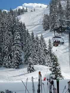 Skiing the tree lined pistes of Flaine in the Grand Massif (France)