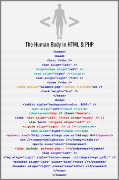 The Human Body in HTML & PHP {Infographic} - Best Infographics
