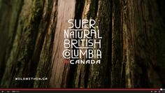 Wild Within Video, Hello BC, BC Tourism, Vancouver Island Vacation, British Columbia Vacation
