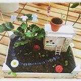 #slowlifeweek von @your.slifestyle *Entspannter Wochenstart* ☀️ Einen entspannten Wochenstart habe ich, wenn die kleine Fee in unserem Mini Fairy Garden ihre Wäsche selbst zum Trocknen aufgehängt hat. 😉🦄 Startet gut in die neue Woche! ☁️😘