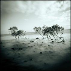 Thames Coast de Mark Hamilton sur Art Limited