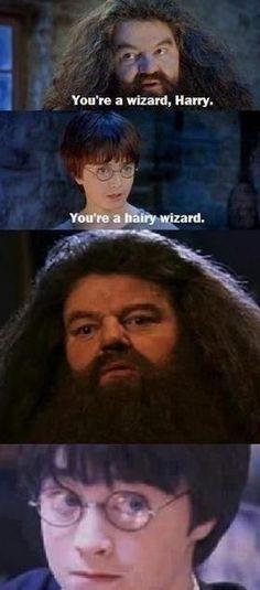 Diese Wahrheit:   17 Harry-Potter-Bilder, die niemals nicht witzig sind