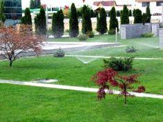 Sisteme de irigatii, eco-horticultura servicii Golf Courses, Tennis, Horticulture