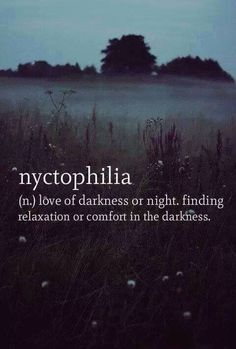 Nyctophiliac here. I like the darkness. The words, the lack of words, the lighting, the lack of lighting. I can sit in moonlight and love it. So not complete darkness. Just dark dark. The Words, Cool Words, Dark Words, New Words With Meaning, Word Meaning, Words Quotes, Sayings, Rain Quotes, Text Quotes