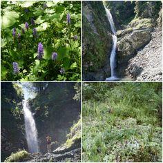 Natur Juwel Eifelsbacher Wasserfall