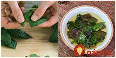 Zabudnite na sušenie: Toto je ten úplne najlepší tip, ako uskladniť bazalku! Seaweed Salad, Palak Paneer, Cholesterol, Sprouts, Korn, Green Beans, Canning, Vegetables, Ethnic Recipes