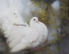 "Sandy Byers Pastel painting, ""Hope's Landing"" There is always a light that shines on Hope's Landing. white doves BIRD Animal Painting"