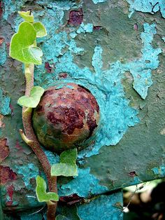 Rust | さび | Rouille | ржавчина | Ruggine | Herrumbre | Chip | Decay | Metal | Corrosion | Tarnish | Texture | Colors | Contrast | Patina | Decay | by Auntie P on flickr