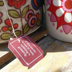 'If the earth is not in love, nothing is growing' #yogitea #quote