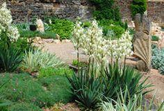 295 meilleures images du tableau Jardins | Garden paths, Landscape ...