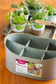Easy DIY Indoor Herb Planter – Unsophisticook Easy Indoor Herb Garden -- I was an indoor container gardening failure, until I decided a different approach was in order. Find out how you can create this simple indoor herb garden in under 10 minutes! Indoor Vegetable Gardening, Hydroponic Gardening, Container Gardening, Organic Gardening, Herb Gardening, Planting, Herbs Garden, Herb Garden Indoor, Gardening Vegetables