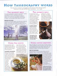 Mind, Body, Spirit Collection - How Tasseography Works Reading Tea Leaves, Tea Reading, Magick, Wiccan, Witchcraft, Tarot Card Meanings, Cartomancy, Fortune Telling, Practical Magic