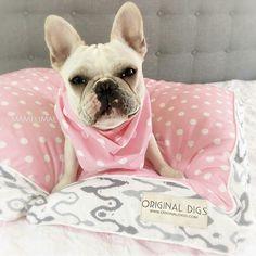Check out Pink Dog Bed, Polka Dot Pet Bed, Dog Bed Pillow, Washable Dog Bed Cover, Dog & Cat Furniture, Pet Pillow, Small Medium Large Dog Beds on originaldigsllc