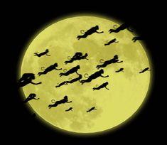 flying monkeys | Fly On Little Wing: Operation Flying Monkey Bike