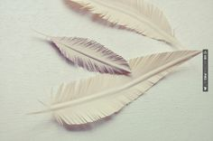 Fantastic! - paper feathers | CHECK OUT MORE GREAT WHITE WEDDING IDEAS AT WEDDINGPINS.NET | #weddings #whitewedding #white #thecolorwhite #events #forweddings #ilovewhite #bright #pure #love #romance