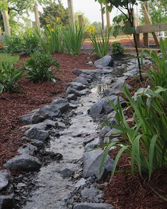 Affordable rain gardens clean the drain (Cory Gallo Mississippi State University.) - All About Gardens Garden Yard Ideas, Backyard Projects, Garden Spaces, Outdoor Projects, Lawn And Garden, Rain Garden, Dream Garden, Low Cost, Garden Tool Shed
