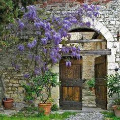 Door gate to inside
