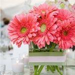 pretty centerpieces... Love gerber daisies.