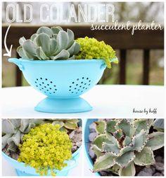 Old Colander Succulent Planter ~ how to make   _via HouseByHoff.com/2014/05/old-colander-succulent-planter.html