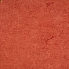 Chestnut Linoleum Flooring, Vinyl Flooring, Middle School Classroom,  Commercial, Paint Linoleum, 450b610093