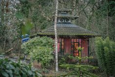 Chinese Summer House Situated In The Gardens At Talhenbont Hall HousesNorth WalesWelshWedding VenuesMagnoliasCottagesChineseHallMagnolia Trees