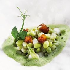 5 Chefs Who Master The Art Of Plating in Lima –  The Art of Plating