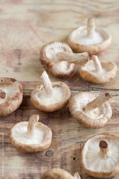Shiitake Mushrooms by noemihauser - Noemi Hauser | Stocksy United