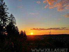 #Stadtwald #Iserlohn #Sonnenuntergang #Wald