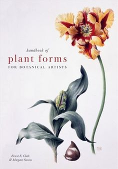 Handbook of Plant Forms for Botanical Artists by Margaret Stevens http://www.amazon.com/dp/184994072X/ref=cm_sw_r_pi_dp_r8DAvb16QQYT1
