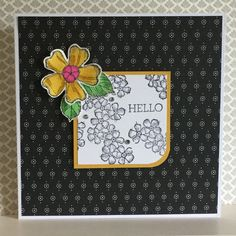 Birthday Blossoms stamp set with a backing paper from the Timeless Elegance designer paper pack - created by Julia Jordan of papercraftelegance.blogspot.com