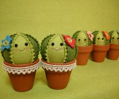 smiling cacti in little terra cotta pots!