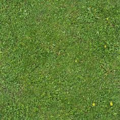 Seamless Green Grass Texture 01 by ~goodtextures on deviantART