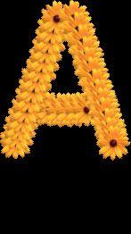 Alfabeto hecho con margaritas.