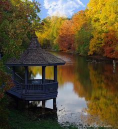Fall at the Duck Pond in Shreveport, Louisiana