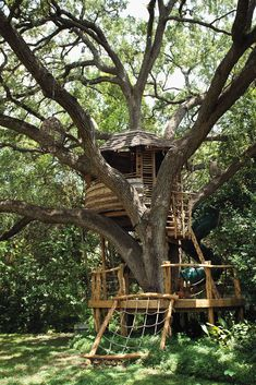 Treehouse Masters' Pete Nelson: 5 Things Every Beginning Builder Must Know – Parade Treehouse Masters, Building A Treehouse, Treehouse Ideas, Zelt Camping, Tree House Plans, Cool Tree Houses, Beautiful Tree Houses, Tree House Designs, Backyard Play