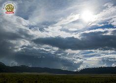Por más que el día esté nublado siempre habrá alguien que te pinte el sol.